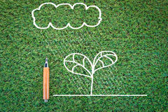Eco concept with drawing of tree and cloud Royalty Free Stock Photo