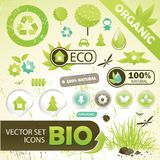 Eco concept elements Royalty Free Stock Images
