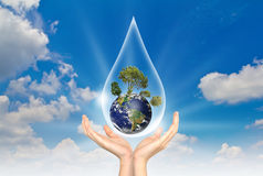 Eco concept : Hand hold water drop and tree. Eco concept : Hand hold water drop with tree inside against the sun and the blue sky Stock Photo