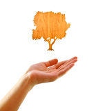 Eco concept : Hand with tree made by wood Stock Photography