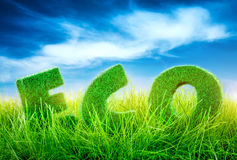Eco concept. Letters on the green grass on blue sky background. Eco concept Stock Image