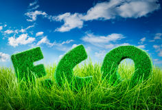 Eco concept. Letters on the green grass on blue sky background. Eco concept Stock Photos