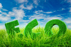 Eco concept Letters on the green grass on blue sky background. Stock Photos