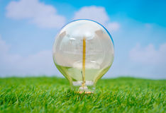 .Eco concept - light bulb grow in the grass against blue sky Royalty Free Stock Photos