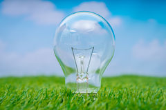 .Eco concept - light bulb grow in the grass against blue sky Stock Images