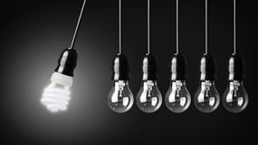 Eco concept. Perpetual motion with light bulbs and energy saver bulb royalty free stock photos