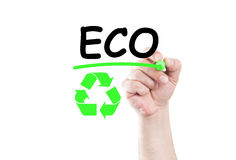 Eco Royalty Free Stock Image