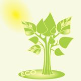 Eco concept. Vector trees with green leaves. Abstract vector graphic illustration. Sun in the backround Royalty Free Stock Images