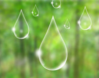 Eco concept : water drop Royalty Free Stock Photography