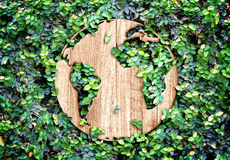 Eco concept :Wood texture world icon on green leaves wall Stock Images