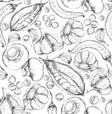 无缝的手拉的背景 剪影样式套菜 葡萄酒eco食物 也corel凹道例证向量 库存照片