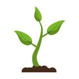 Eco crescente da planta do broto ilustração stock