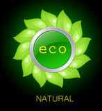 Eco cyrcle icon Royalty Free Stock Photo