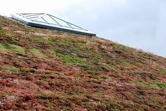 Eco Dach 2 Lizenzfreie Stockbilder