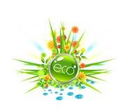 eco de conception Photographie stock libre de droits