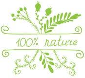 Eco de dessin de main et logo de nature avec des feuilles et des fleurs Illustration de griffonnage de vecteur illustration de vecteur