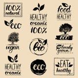 Eco de vecteur, logos organiques et bio Sains manuscrits mangent des logotypes réglés Vegan, nourriture naturelle et signes de bo Photo libre de droits