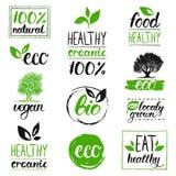 Eco de vecteur, logos organiques et bio Sains manuscrits mangent des logotypes réglés Vegan, nourriture naturelle et signes de bo Images stock