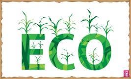 Eco del campo di grano illustrazione di stock
