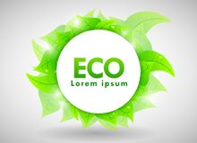 Eco Design Stock Image