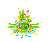 Eco design Royalty Free Stock Photography