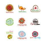 Eco design elements. Royalty Free Stock Image