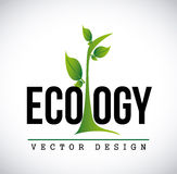 Eco design Stock Photo