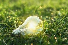 eco do conceito ampola na grama verde com por do sol e parte traseira do bokeh Fotografia de Stock