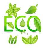 Eco doorbladert Royalty-vrije Stock Foto's