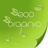 Eco e insignias orgánicas Imágenes de archivo libres de regalías
