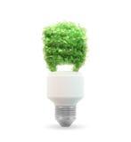 Eco e lampadina verde di energia Fotografia Stock