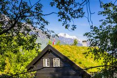 Eco ecological home grass roof. Of a house in Norway, Europe stock images