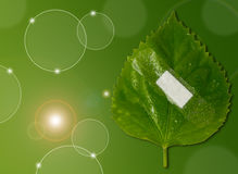 Eco ecology or nature protection concept Stock Image