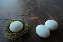Eco eggs Stock Photo