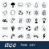 Eco Elemente und Umgebungsweb-Ikonen eingestellt Lizenzfreie Stockbilder
