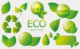 Eco elements and icons Stock Image