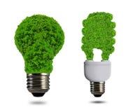 Eco energii żarówka Zdjęcie Royalty Free