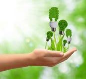Eco Energiebirne in der Hand Lizenzfreies Stockbild