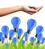 Eco energii żarówki Obraz Stock