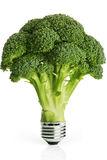 Eco energy. Renewable energy concept. Light bulb and green broccoli royalty free stock image