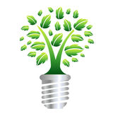 Eco Energy. Concept, Ecology Bulb, Isolated On White Background, Vector Illustration Stock Images