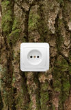 Eco energy. Eco electric energy concept, socket on bark Royalty Free Stock Photo