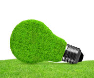 Eco energy bulb in grass Royalty Free Stock Image
