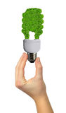 Eco energy bulb Royalty Free Stock Photography