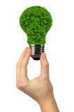 Eco energy bulb Stock Image