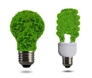 Eco energy bulb Royalty Free Stock Photo