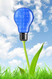 Eco energy bulb Royalty Free Stock Image