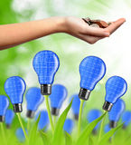 Eco energy bulb from solar panels Stock Image