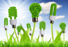 Eco energy bulb. With sunny sky - Green energy concepts Stock Photo