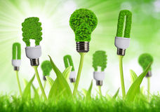Eco energy bulbs. On green background Stock Photography